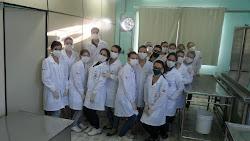 Aula Prática com Dissecação
