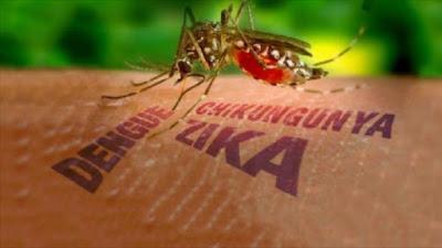 Apa itu Zika Virus (Demam Zika)