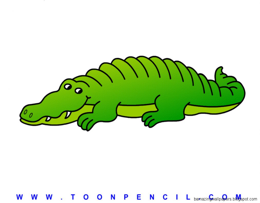 how to draw an alligator for kids
