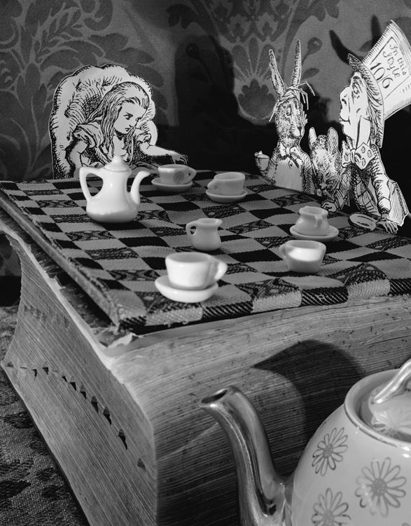 Alice's Adventures in Wonderland – Abelardo Morell