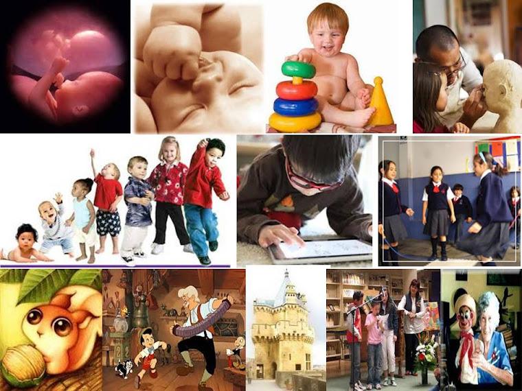 Desarrollo Físico Psicomotriz Cognitivo Socioafectivo