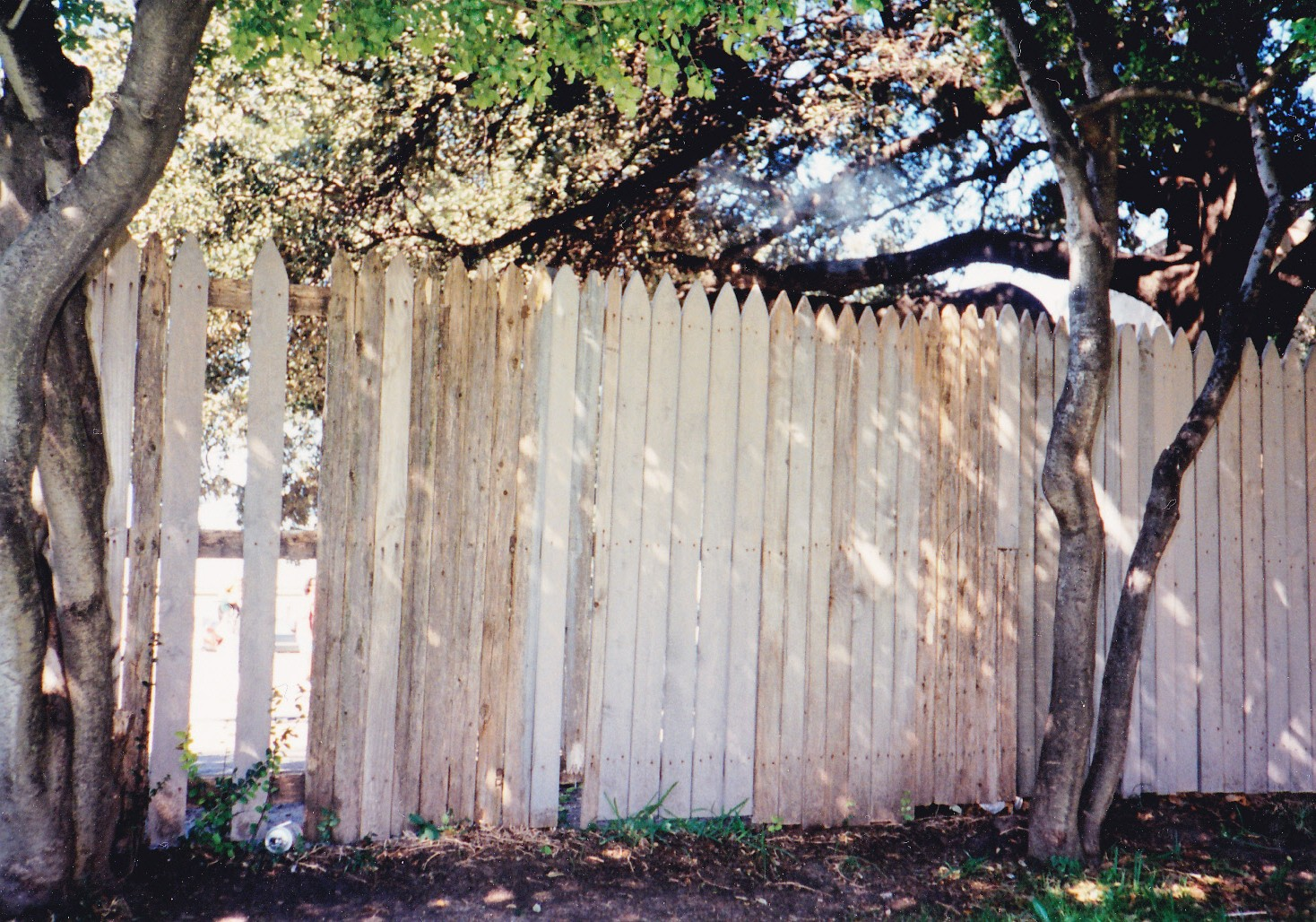 Wooden fence behind grassy knoll where kill shot came from