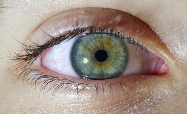 Colores de los ojos humanos desde el marr n hasta el rojo - Colores verdes azulados ...