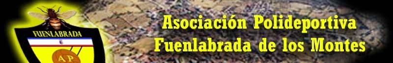 ASOCIACION POLIDEPORTIVA FUENLABRADA DE LOS MONTES