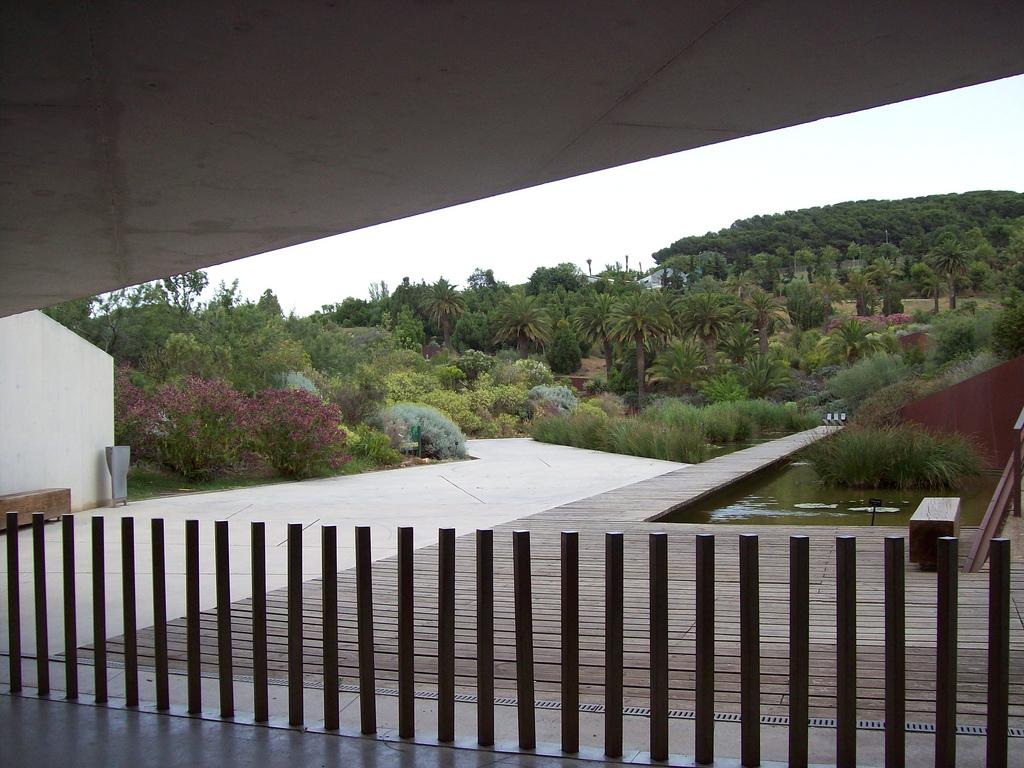 Arquitectura de barcelona jard n bot nico for Jardin botanico montjuic