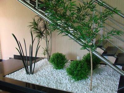Tirol Plantas -Leve o verde para sua casa: Jardim Oriental ...