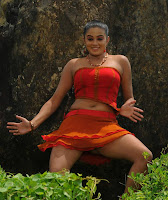 Actress, Priyamani, Navel, Show, Photos