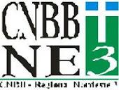 CNBB NE3 - SITE OFICIAL