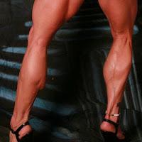 fbb calves