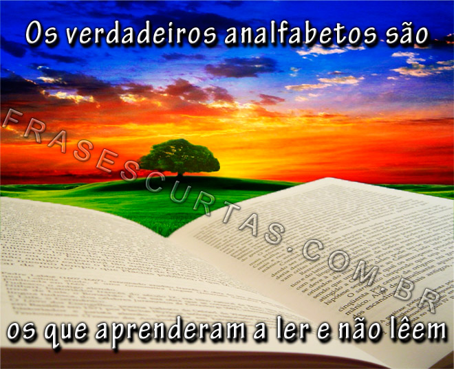 Dia Nacional Do Livro Frases Marcantes De Livros E Escritores