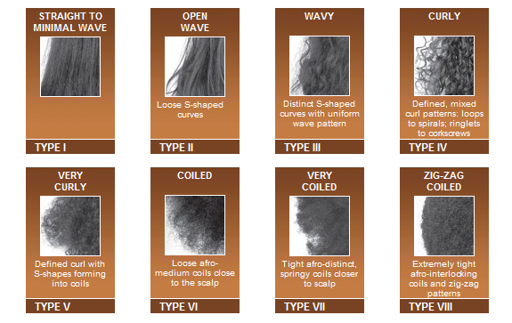 Mizani Curl Hair Type Black Blog Archive Regimen