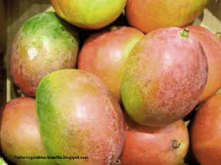 benefits_of_eating_mangos_fruits-vegetables-benefits.blogspot.com(benifits_of_eating_mangos(12)