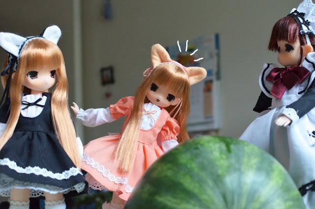 mamachapp cats and melon