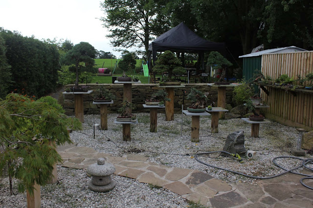 Wildwoodbonsai carving workshop in cheshire