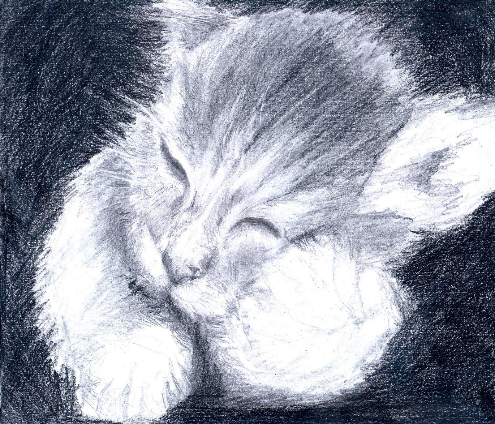 st art lovin more sketches cat hands