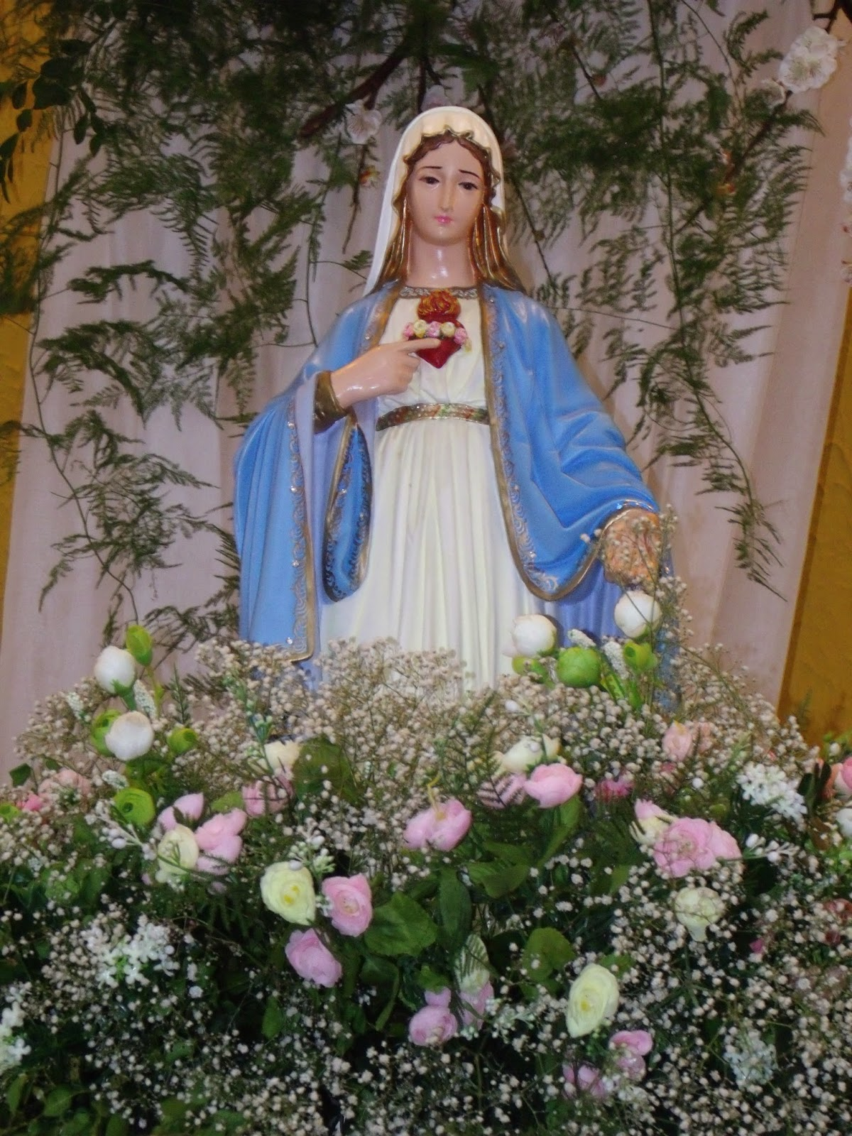 Imagens da Santa Missa da visitação de Nossa Senhora e Coroação