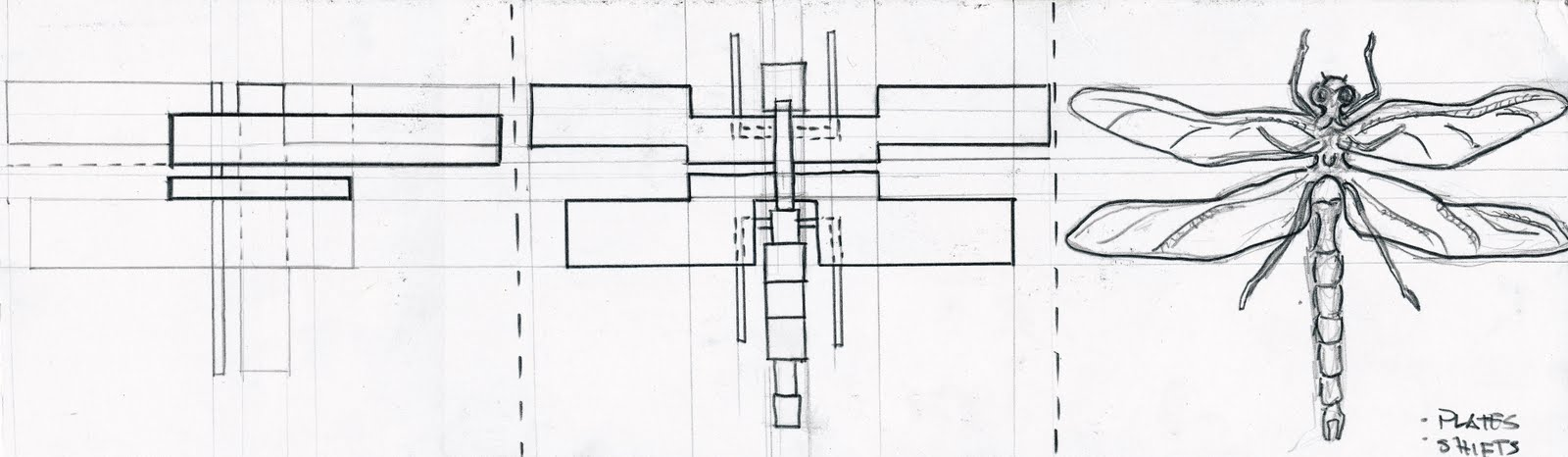 P1 X4 Analytical Drawings Floridian Chorography