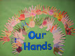 Our Hands!