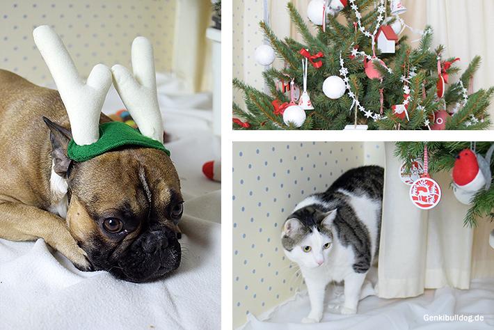 Weihnachtsgrüße Hund
