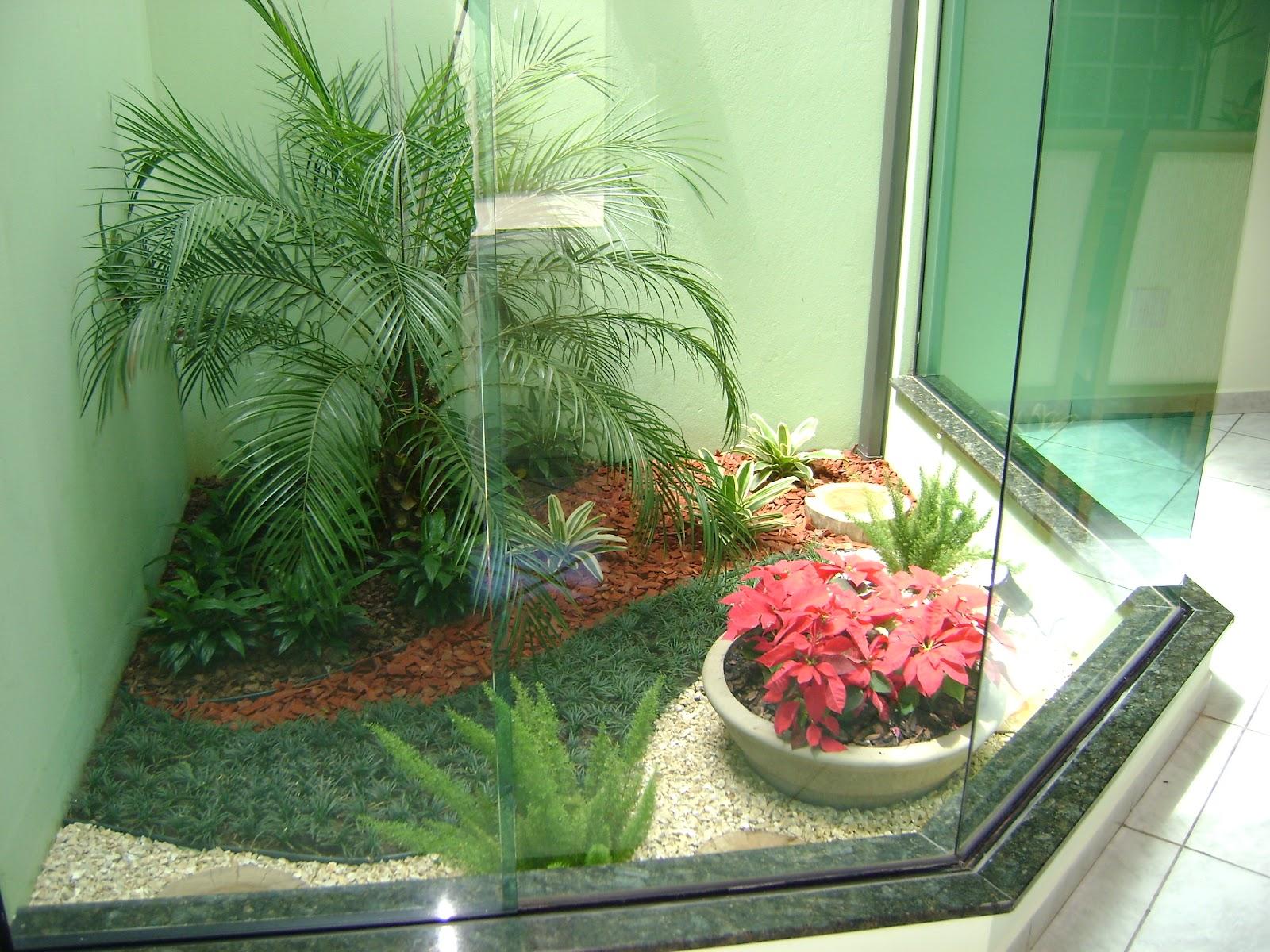 Jardins internos o que plantar dentro de casa dicas op es for Interno s
