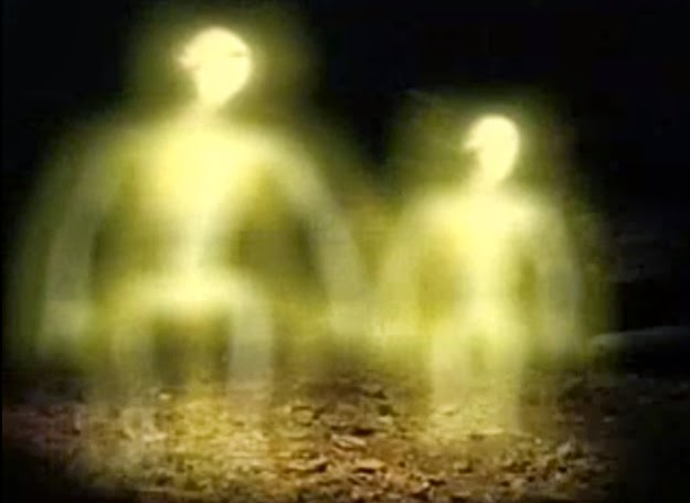 Couple Captures Creepy Video of an Alien Inside Their House?