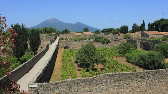 mount vesuvius; pompeii, italy