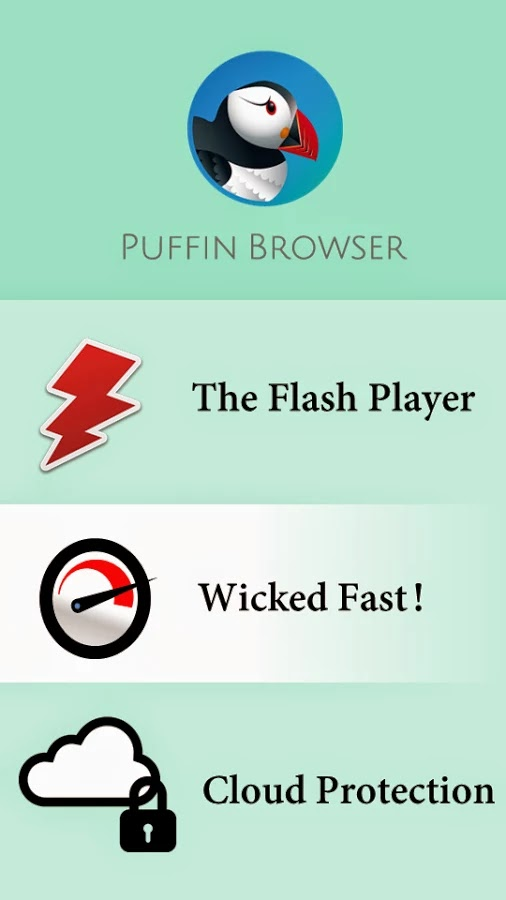 Puffin Web Browser v4.1.1.111984