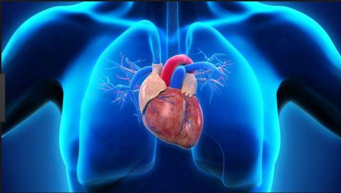 Viagra alcohol heart attack