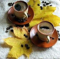 ...O cafeluta Dulce Amaruie....