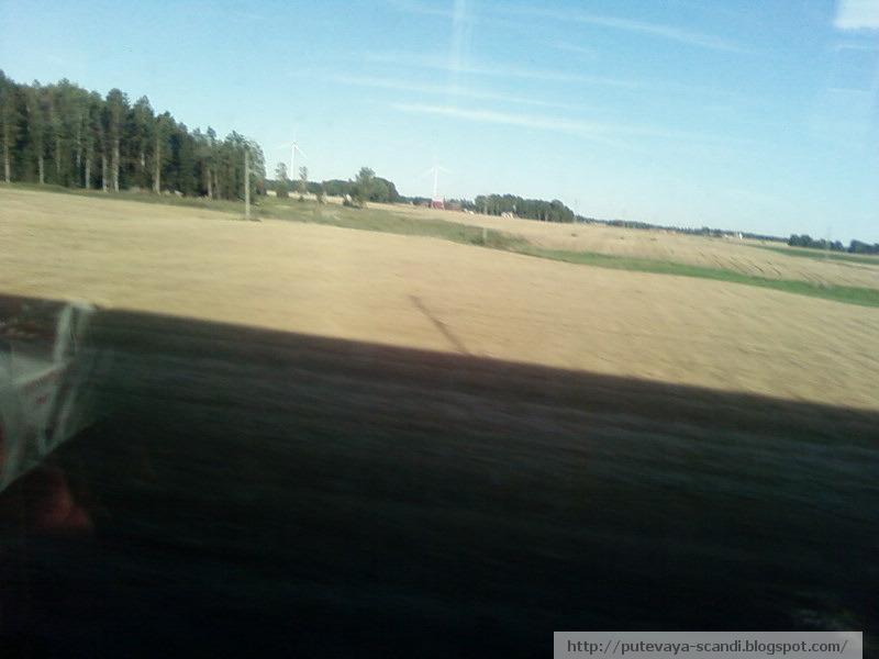 шведское поле