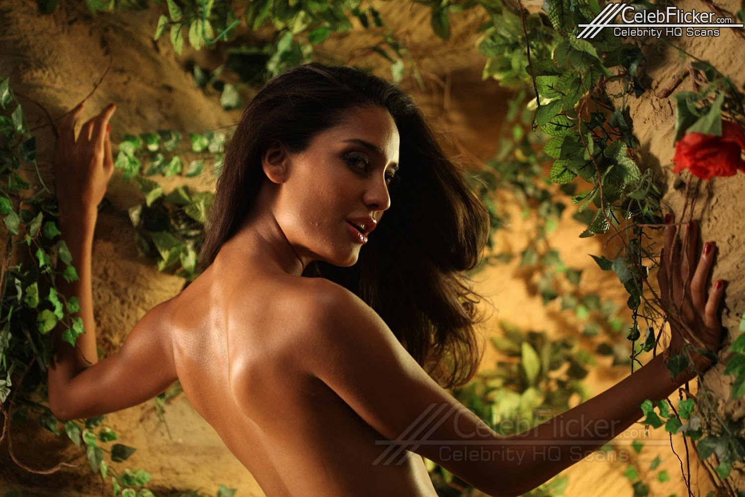 lisa haydon is smoking hot in rascals! | bollywood paradize