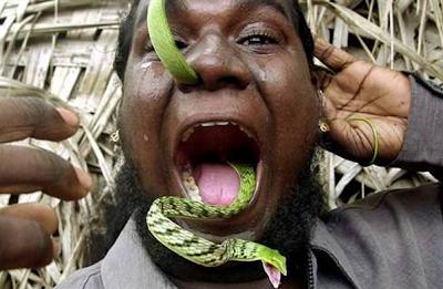Memasukkan Ular Dalam Hidung Keluar Mulut