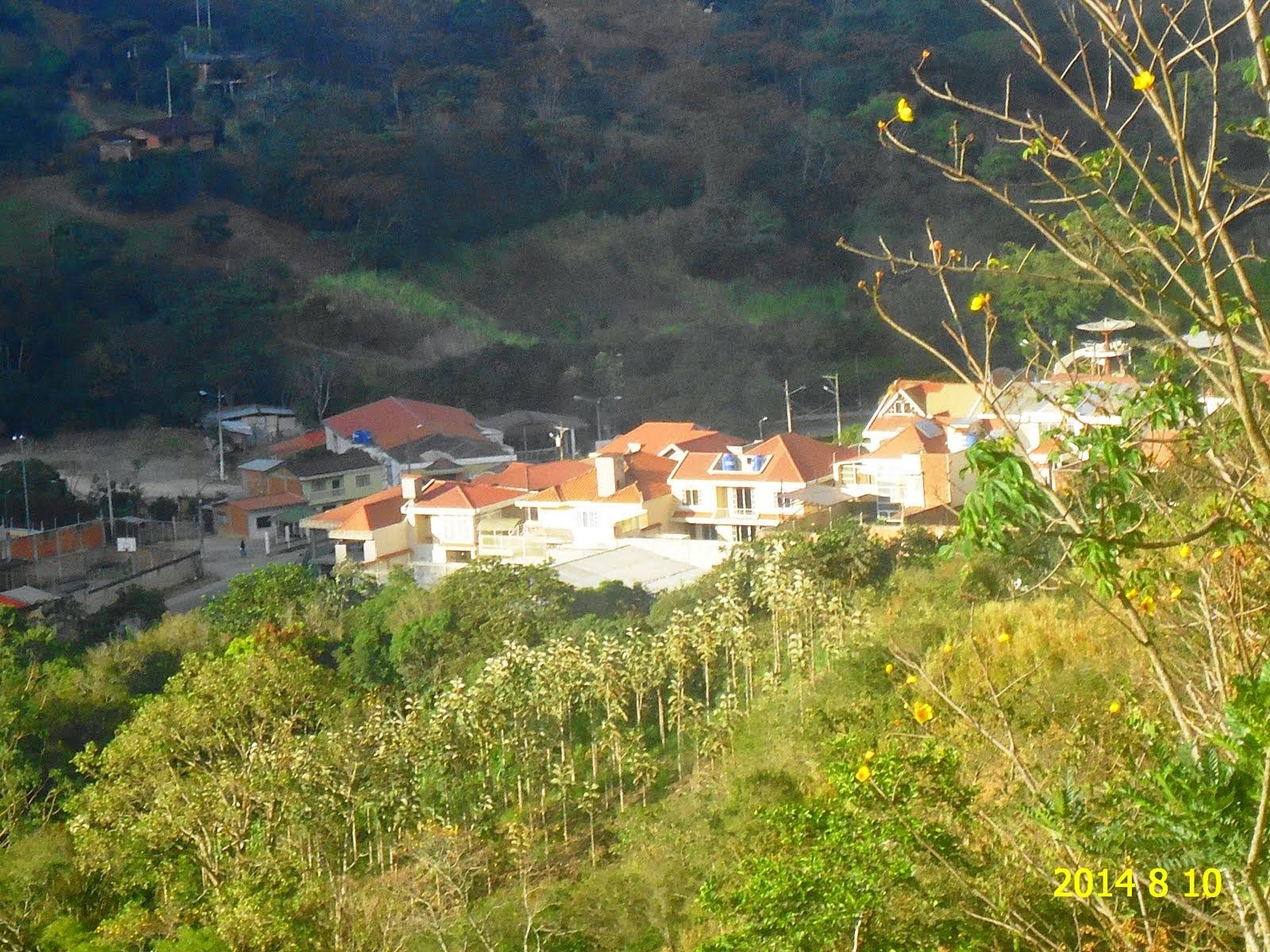 BELDACO FLORECIDO