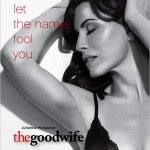 Assistir  The Good Wife 4ª Temporada Legendado Online