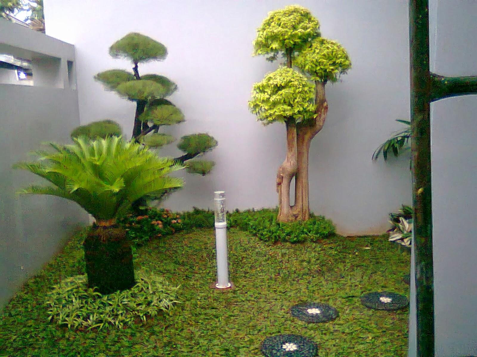 gambar taman minimalis terbaru contoh taman minimalis