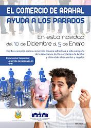 CAMPAÑA NAVIDAD ACIA 2012