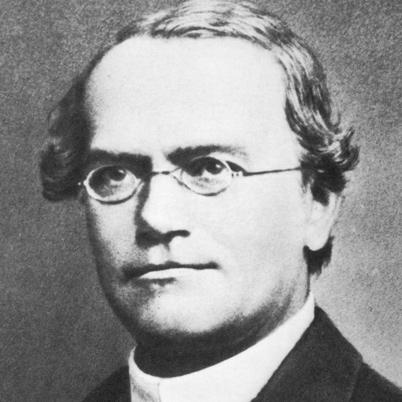 http://en.wikipedia.org/wiki/Gregor_Mendel