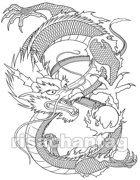 Chinese Dragon Tattoo Drawings