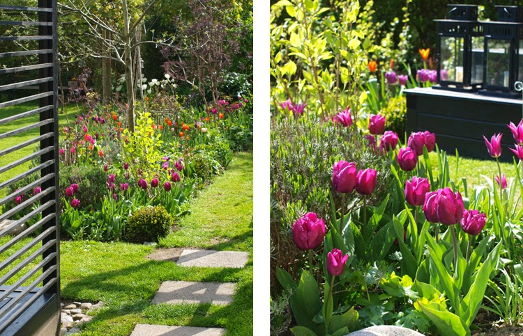 Skab en have fuld af farve om foråret