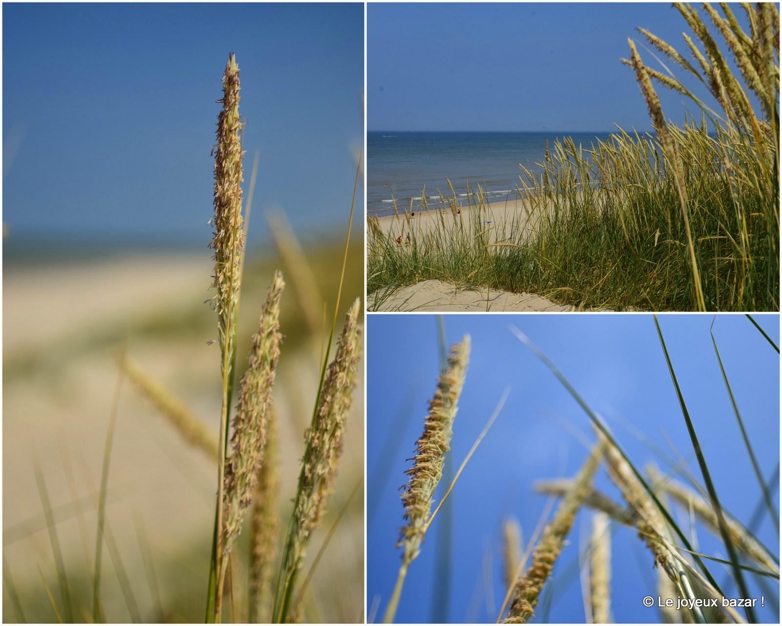 http://joyeuxbazar.blogspot.fr/2013/07/les-dunes.html