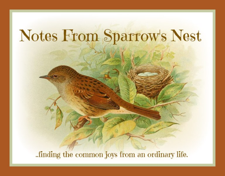 Notes From Sparrow's  Nest