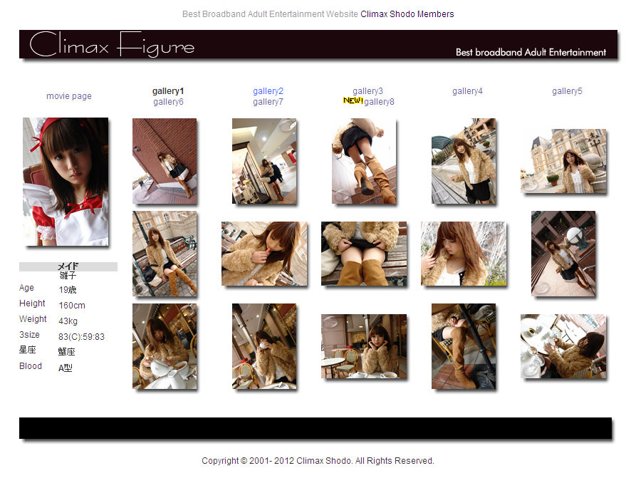 Climax Shodo - Climax Figure - Hinako 04070