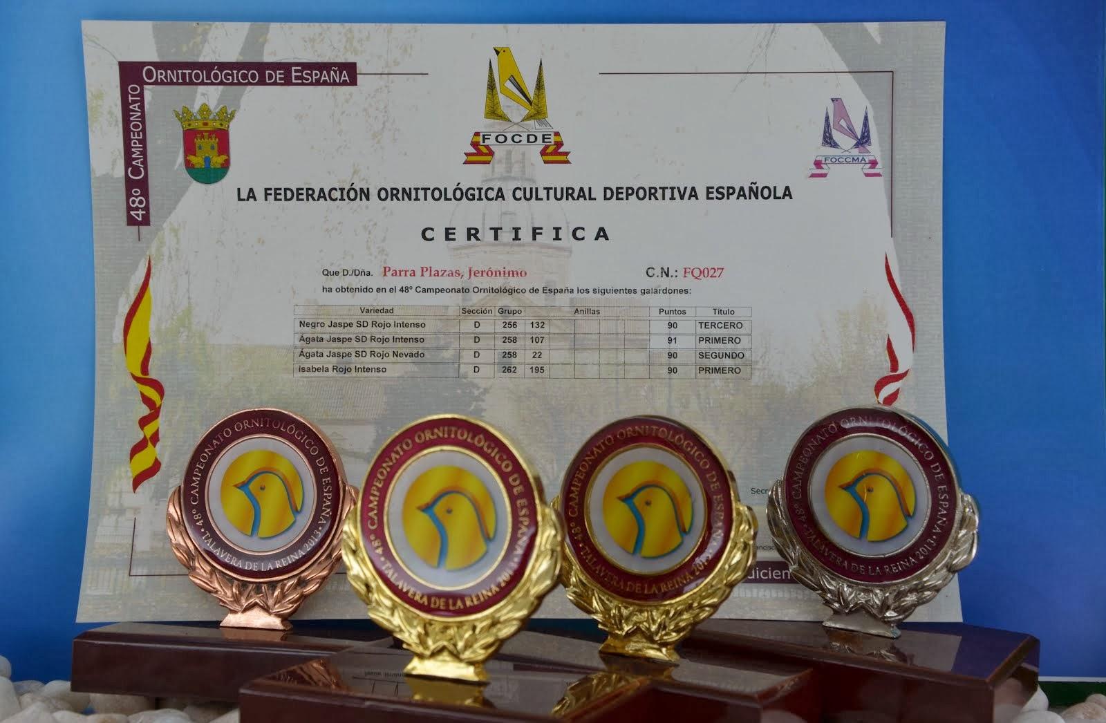 TROFEOS NACIONAL FOCDE 2013