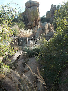 Rocks at Cochise Stronghold