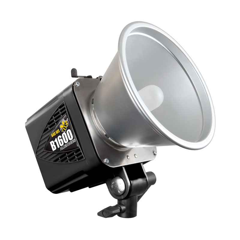 Why The Alien Bee AB1600 Is My Favorite Studio Light Outdoors Awesome Ideas