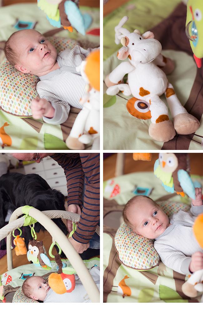 babygym,skiphop,karusellkaramell,bebis,teddykompaniet