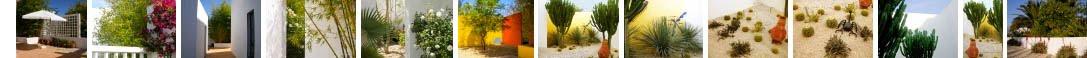 Garden Design Isabel Blaser