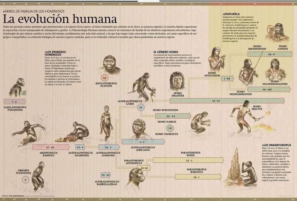 la Caverna del Escriba: La Evolución Humana