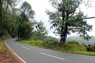 Ooty-Kattapettu-Kotagiri Highway