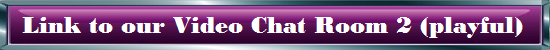 Link to Video Chat Room 2 (playful)